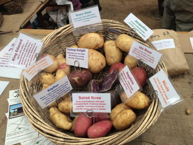 Heitage, Potato, Biodiverity